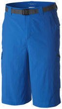 COLUMBIA SILVER RIDGE CARGO SHORT MENS AM4084 438