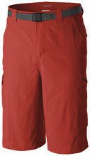 COLUMBIA SILVER RIDGE CARGO SHORT MENS AM4084 845